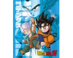 Plakát Dragon Ball Z Trunks and Goten